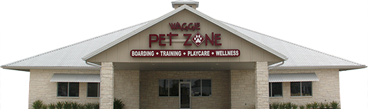 Training Zone | Waggie Pet Zone